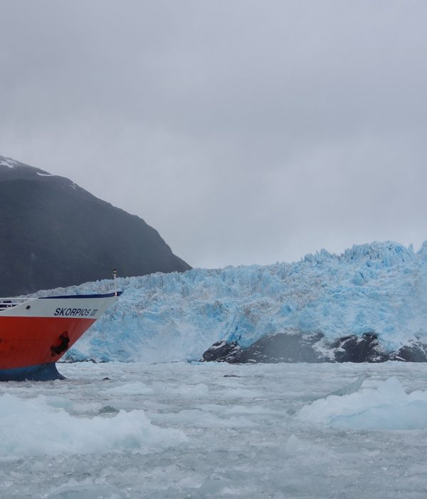 Patagonia: Glacier Cruise in Chilean Fjords