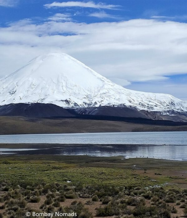 North Chile : Elqui Valley and Lauca National Park